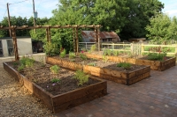 Raised-beds-paving-Norwich-Norfolk