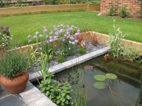 Norwich-patio-paving-with-pond