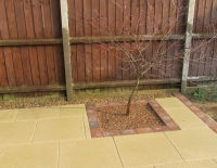 Patio-Norwich-with-border